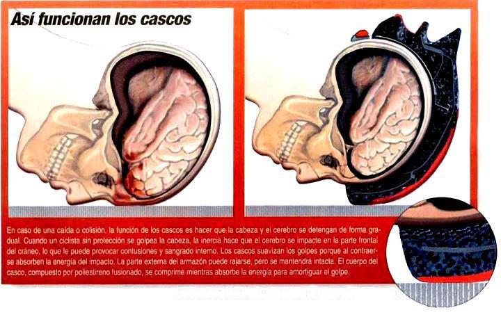CICLISTAS Y USO DEL CASCO